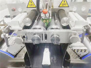 Large Capacity Automatic Vgel Encapsulation Machine With Aluminum Cover